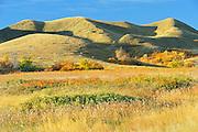 Hills in autumn<br /> Saskatchewan Landing Provincial Park<br /> Saskatchewan<br /> Canada
