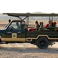 Africa, Kenya, Amboseli. Tortillis Jeep in Amboseli.