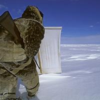 BAFFIN ISLAND,  Nunavut, Canada. Inuit hunter Laimake Palluq hides behind portable blind while stalking a ringed seal sleeping on frozen Baffin Bay.