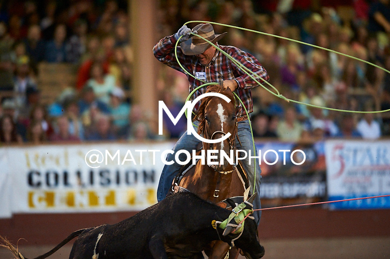 Team roper Travis Bounds of Grand Junction, CO competes at the Pikes Peak or Bust Rodeo in Colorado Springs, CO.<br /> <br /> <br /> UNEDITED LOW-RES PREVIEW<br /> <br /> <br /> File shown may be an unedited low resolution version used as a proof only. All prints are 100% guaranteed for quality. Sizes 8x10+ come with a version for personal social media. I am currently not selling downloads for commercial/brand use.