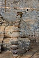 A monkey walks atop the foot of a Reclining Buddha, Gal Vihara, Ruins of ancient city, Polonnaruwa, Sri Lanka.