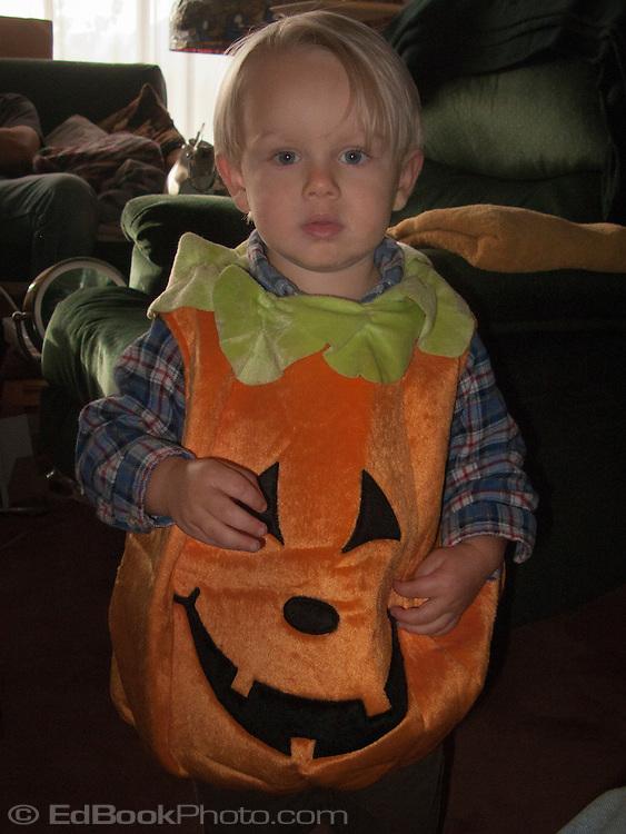 Talus Brubaker Book in a pumpkin costume