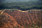 Forest clear-cut near Eureka, California, USA.