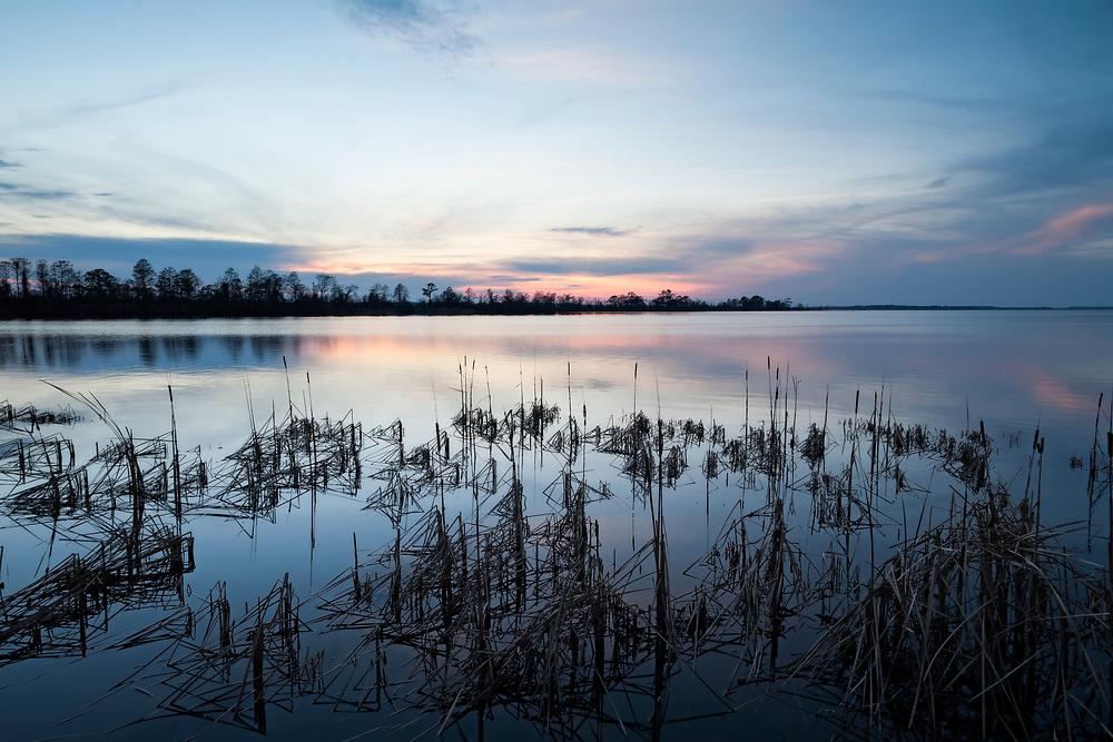 Winter Sunset, Lake Mattamuskeet