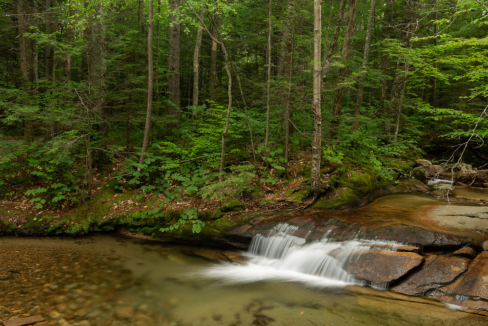 A gentle cascade filling up a rocky riverbed in Franconia Notch.