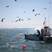 Lobster fishing in Christchurch Bay, Dorset. UK