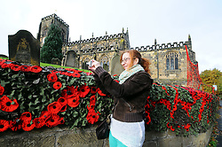 Licensed to London News Pictures 07/11/2016<br /> More than thirty-five thousand knitted and crocheted poppies have been tied to church railings and walls around Thirsk, North Yorkshire.<br /> The town's 'yarnbombers' have done it to mark Remembrance Day.<br /> The poppies have been knitted by ladies in the town and helped by knitters around the world.<br /> The knitted and crocheted flowers can be seen at St Mary's Church in Thirsk and St Oswald's Church in Sowerby and along the Remembrance Day parade route.<br /> Picture shows Jackie Walton of Over Silton, N Yorkshire at St Mary's, Thirsk<br /> Photo Credit: Sam Atkins/LNP