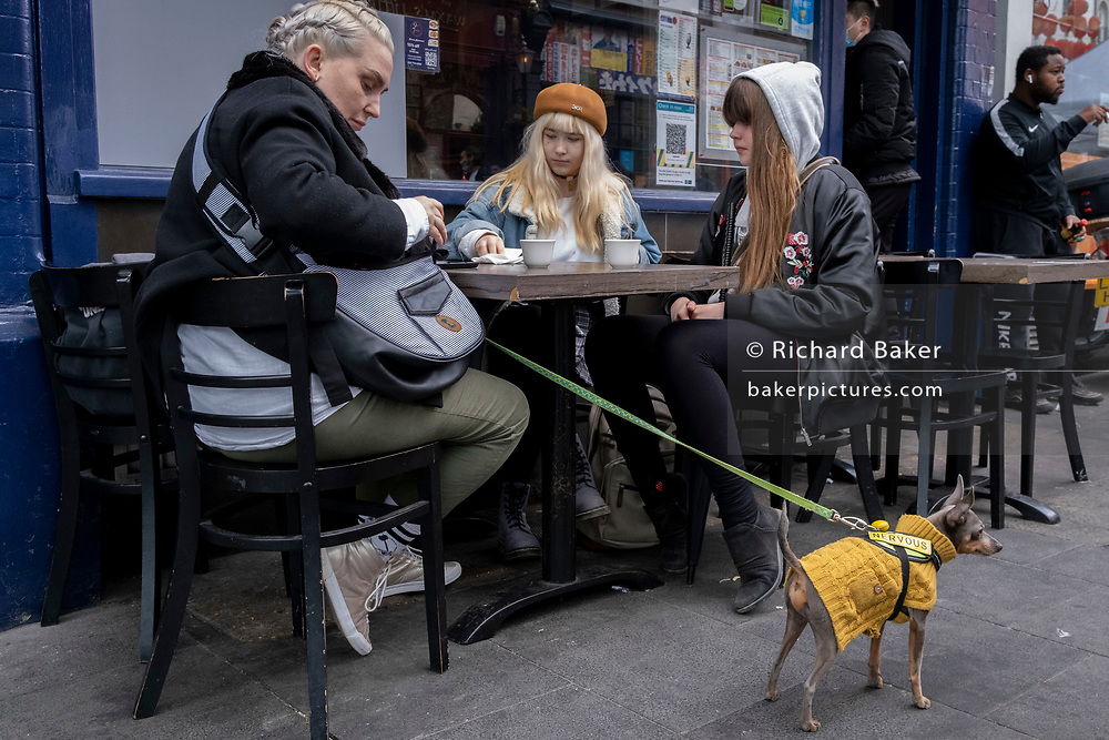 On the day that the UK government eased Covid restrictions to allow non-essential businesses such as shops, pubs, bars, gyms and hairdressers to re-open, a nervous pet dog is held on a lead while three women enjoy an outdoor meal in Chinatown, on 12th April 2021, in London, England.