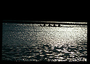 Barcelona Olympics 1992 - Lake Banyoles, SPAIN,  Late evening training round the lake,  Photo: Peter Spurrier/Intersport Images.  Mob +44 7973 819 551/email images@intersport-images.com.       {Mandatory Credit: © Peter Spurrier/Intersport Images].