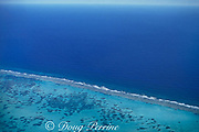 South Wall barrier reef,<br /> Little Cayman, Cayman Islands,<br /> ( Caribbean Sea )