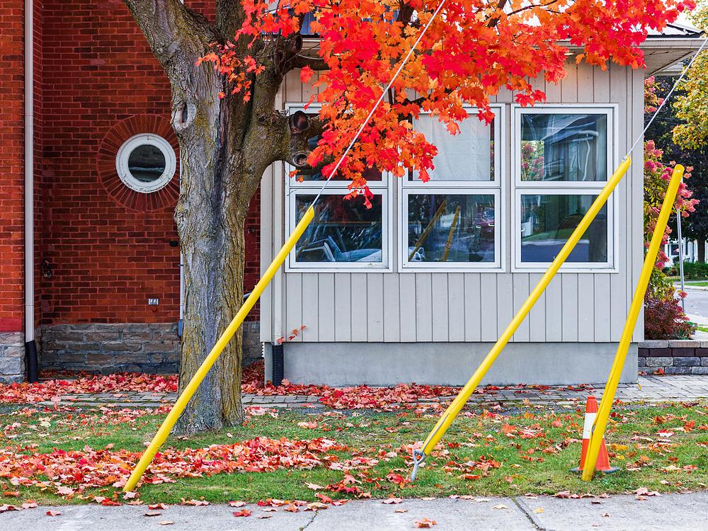 https://Duncan.co/fall-color-and-facade
