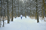 Walking a trail in winter. St. Vital Park<br />Winnipeg<br />Manitoba<br />Canada