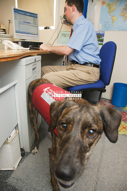 Hearing dogs for deaf people - dog with owner at work.