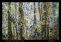 14 Trees - Acrylic on stretched canvas, 48 x 32 inches
