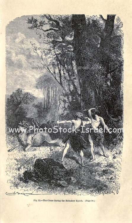 The Chase, (hunt) during the Reindeer epoch according to the French illustrator Emile Bayard (1837-1891), illustration Artwork published in Primitive Man by Louis Figuier (1819-1894), Published in London by Chapman and Hall 193 Piccadilly in 1870