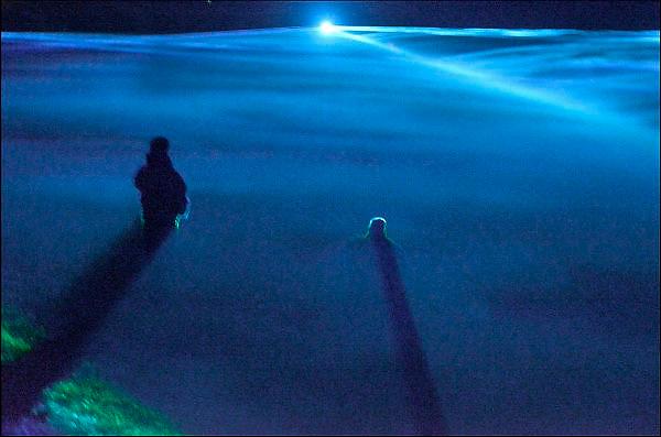 Nederland, Westervoort, 1-3-2015De afgelopen dagen kon men Waterlicht, een creatie van ontwerper en kunstenaar Daan Roosegaarde, bezoeken en ervaren. Het kunstwerk is in opdracht van Waterschap Rijn IJssel ontworpen. Moderne laser technologie verandert de hoogwatergeul bij de dijk van Westervoort in een droomlandschap. Het kunstproject in de uiterwaarden toont hoe hoog het water tegen de dijken stond tijdens het hoogwater van 1995, en heeft tot doel het publiek bewust te maken van de noodzaak tot bescherming tegen het water.FOTO: FLIP FRANSSEN/ HOLLANDSE HOOGTE