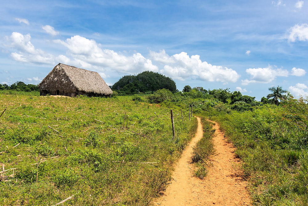 12 September 2015: Mud road and old cottage barn in the UNESCO world heritage site of Vinales, Cuba.