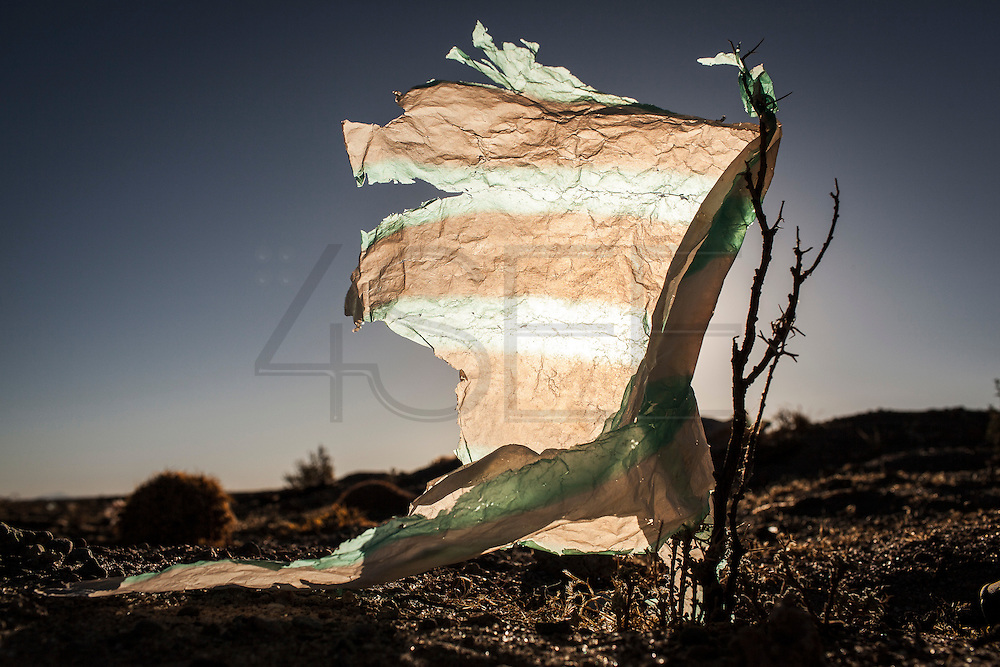 08/11/2014 - Uyuni, Bolivia:Plastic tree #22. Plastic bags are part of the landscape of the Bolivian Altiplano. The accumulation of plastic bags on the environment cause deterioration of the landscapes and agriculture soils and it is associated to the death of domestic and wild animals.