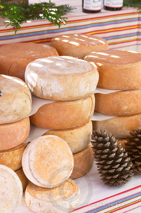 On a street market. Tomme Cheese. Bordeaux city, Aquitaine, Gironde, France