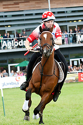 © Licensed to London News Pictures. 21/07/2015. Llanelwedd, UK. An England Team rider negotiates the course.  Teams of riders take part in theRoyal Welsh Mounted Games – International World Team Championships. The Royal Welsh Show is hailed as the largest & most prestigious event of it's kind in Europe. In excess of 200,000 visitors are expected this week over the four day show period - 2014 saw 237,694 visitors, 1,033 tradestands & a record 7,959 livestock exhibitors. The first ever show was at Aberystwyth in 1904 and attracted 442 livestock entries. Photo credit: Graham M. Lawrence/LNP