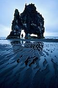 Hvítserkur, rock in the ocean.