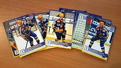 Herning Blue Fox<br /> <br /> Officielle Danske Hockey Trading Card. <br /> <br /> 1998-1999 Komplet Danske Ishockey Kort 228 stk.<br /> <br /> 159. Peter Therkildsen<br /> 160. Kim Fonnesbech<br /> 161. Rasmus Pander<br /> 162. Claus Mortensen<br /> 163. Jan Phillipsen<br /> 164. Jesper Mølby<br /> 165. Lars Mølgaard<br /> 166. Ulrik Thomsen<br /> 167. Petri Skriko<br /> 168. Martin Kristiansen<br /> 169. Lasse Degn<br /> 170. Daniel Nielsen<br /> 171. Erkki Mäkelä<br /> 172. Henrik Toft<br /> 173. Todd Björkstrand<br /> 174. Claus Damgaard<br /> 175. Anders Pyndt<br /> 176. Dan Jensen<br /> 177. Rasmus Hartung<br /> 178. Kasper Degn<br /> 179. Jarmo Mákitalo<br /> 180. Jarmo Kuusisto<br /> 181. Seppo Repo<br /> 182. Blue Fox<br /> <br /> Begrænset komplet sæt på lager. Kontakt: mail@nhcfoto.dk eller tlf. 40277826