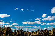 Clouds with blue sky and green foliage horizon