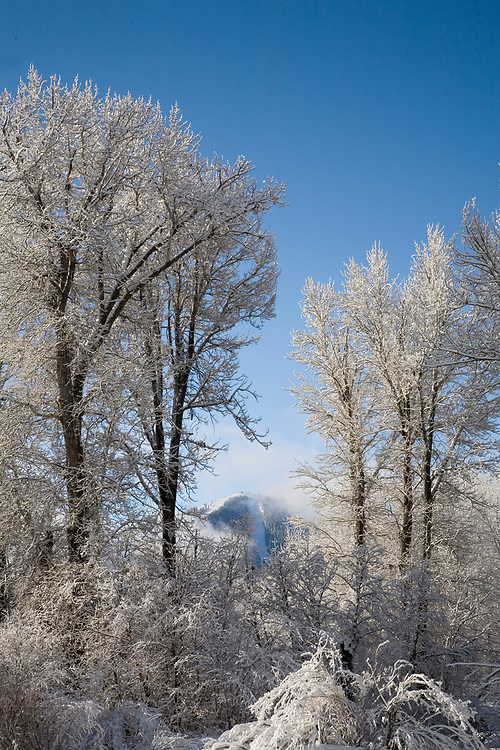 Fresh snow and lifting clouds frame Sun Valleys Baldy Mountain on a winters morning. Licensing and Open Edition Prints.