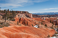 Scenic landscape along Queens Garden trail, Bryce Canyon national park, Utah, USA