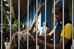 September 12, 2016 - Philippines - A man slaughters a goat during the Eid Al-Adha festivities at the Blue Mosque in Taguig, Metro Manila. Filipino-Muslims celebrated Eid Al-Adha early Monday morning with prayers and games at the Blue Mosque in Taguig, Metro Manila. (Credit Image: © J Gerard Seguia via ZUMA Wire)