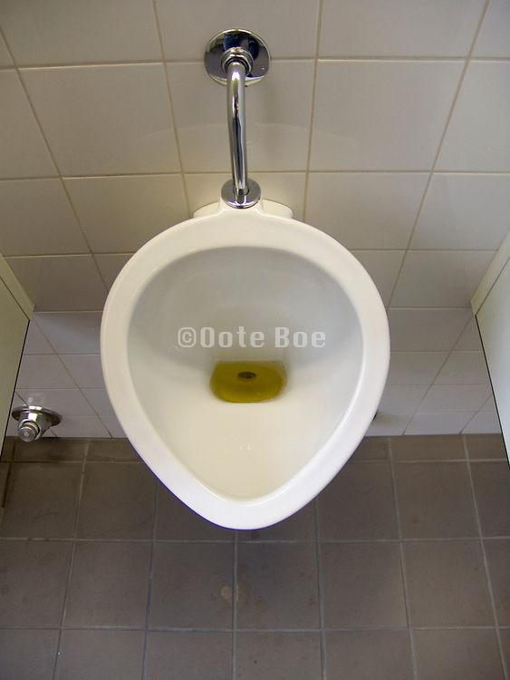 urinal without being flushed