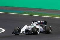 MASSA Felipe (Bra) Williams F1 Mercedes Fw36 action   during the 2014 Formula One World Championship, Brazil Grand Prix from November 6th to 9th 2014 in Sao Paulo, Brazil. Photo Frederic Le Floch / DPPI.