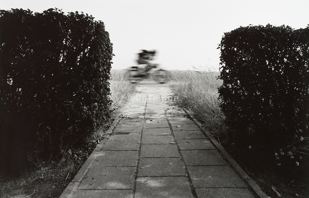 Blurred man on a bicycle riding down a path