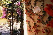 Vines with red flowers stretch across a wall that leads to an outdoor cafe in Positano, Italy