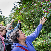 Nederland, Amsterdam, 1 oktober 2017.<br />Exoten fietstocht op zoek naar exotische planten en diersoorten.<br />Op de foto: deelnemers aan de fietstocht in het Beatrixpark op zoek naar exoten.<br /><br /><br /><br /><br />Foto: Jean-Pierre Jans