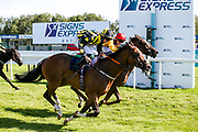 Derry Boy ridden by Rossa Ryan trained by David Evans wins the Visit Valuerater.co.uk Handicap - Mandatory by-line: Robbie Stephenson/JMP - 22/07/2020 - HORSE RACING - Bath Racecoure - Bath, England - Bath Races
