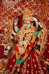 Hindu Goddess Davi Durga Mata,