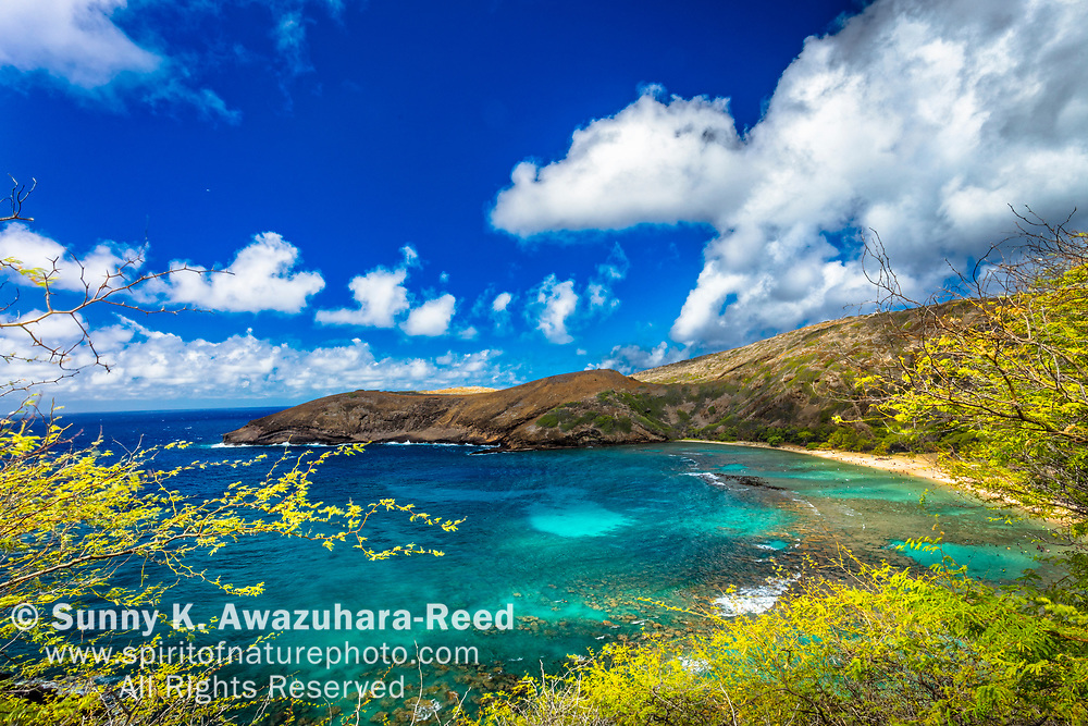 Hanauma Bay overlook under blue sky. Honolulu, Oahu Island, Hawaii.