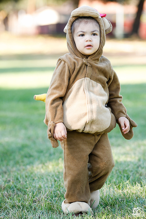 Alexis Nguyen, 2, of Milpitas wears a monkey costume during the annual Sunnyhills Neighborhood Association's Sunnyhills Pre-Halloween Party at Albert Augustine Jr. Memorial Park in Milpitas, California, on October 26, 2013. (Stan Olszewski/SOSKIphoto)