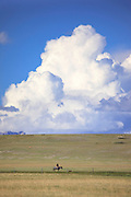 Cowboy and clouds along the Rocky Mountain Front, Montana.