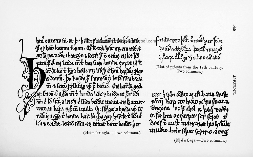 Old Norse Manuscript from the book ' The viking age: the early history, manners, and customs of the ancestors of the English-speaking nations ' Volume 2 by Du Chaillu, Paul B. (Paul Belloni), Published in New York by  C. Scribner's sons in 1890
