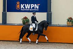 Veeze Bart, NED, Jervaux<br /> Fotodag KWPN Hengstenkeuring 2021<br /> © Hippo Foto - Dirk Caremans<br /> 09/01/2021