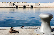 Israel, Jaffa, The ancient port