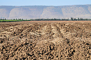 Israel, Hula Valley, Ploughed field