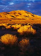 Monitor Range in Central Nevada.