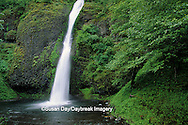 66297-00404 Horsetail Falls Columbia River Gorge Scenic Area   OR
