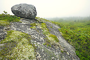 Rock along the trail leading to the Atlantic Ocean<br /> Kejimkujik National Park (Seaside Adjunct)<br /> Nova Scotia<br /> Canada