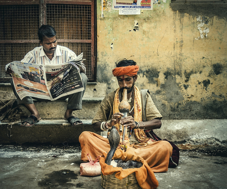 Snake charmers playing music in fron of cobra snake. This entertainers are quite common in the holiest city of Hinduism. Thousands of pilgrims arrive here everyday to bath in the Ganges river and they give money to the snake charmers specially if the snake is a cobra as it is considered a sacred animal by Hinduism.
