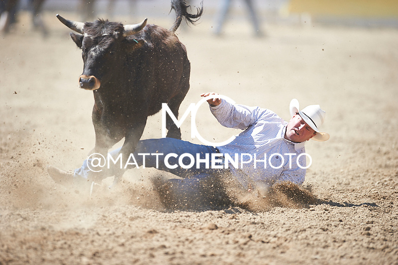 Steer wrestler Brad McGilchrist of Marysville, CA competes at the Redding Rodeo in Redding, CA<br /> <br /> <br /> UNEDITED LOW-RES PREVIEW<br /> <br /> <br /> File shown may be an unedited low resolution version used as a proof only. All prints are 100% guaranteed for quality. Sizes 8x10+ come with a version for personal social media. I am currently not selling downloads for commercial/brand use.
