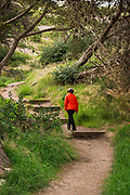 Hiker on the Cavern Point trail, Santa Cruz Island, Channel Islands National Park, California USA